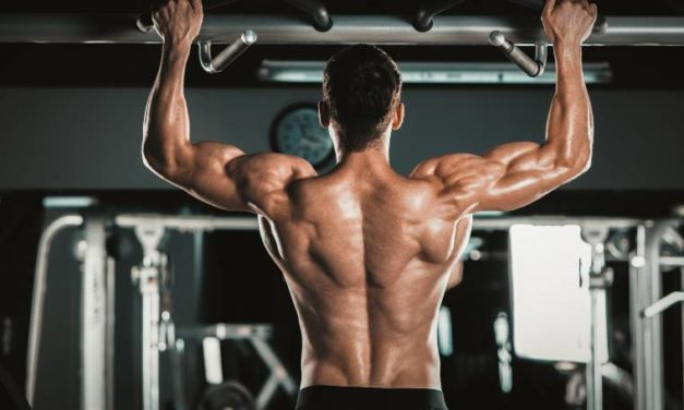 10 Proven Weighted Pull-Ups Benefits That You Want to Know