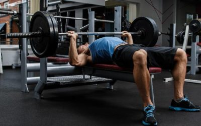 7 Best Weight Benches for Small Spaces and Apartments