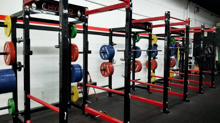 gym's squat racks