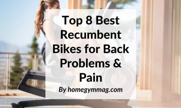 Top 8 Best Recumbent Bikes for Back Problems & Pain
